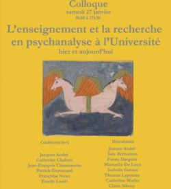 l'enseignement et la recherche en psychanalyse à l'université